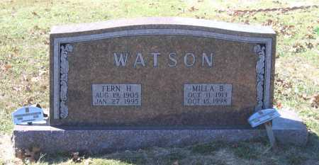 WATSON, MILLA BITHA CLINTON WARD - Lawrence County, Arkansas | MILLA BITHA CLINTON WARD WATSON - Arkansas Gravestone Photos