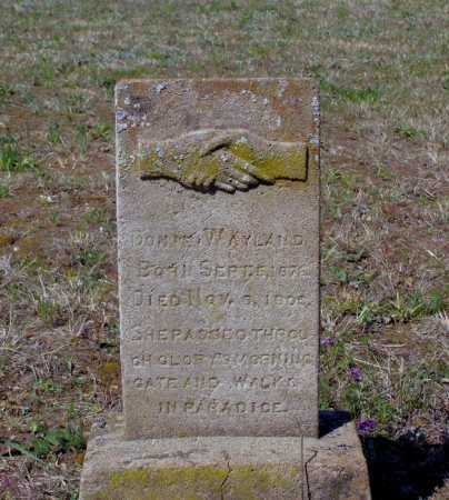"JARRETT WAYLAND, E. CALDONIA ""DONIE"" - Lawrence County, Arkansas | E. CALDONIA ""DONIE"" JARRETT WAYLAND - Arkansas Gravestone Photos"