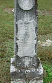WAYLAND, ELISHA THEODORE - Lawrence County, Arkansas | ELISHA THEODORE WAYLAND - Arkansas Gravestone Photos