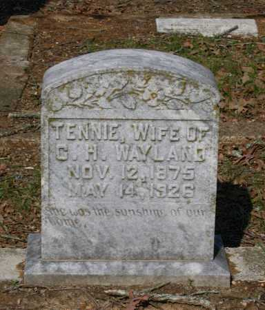 "CLEMENTS WAYLAND, TENNESSEE ""TENNIE"" - Lawrence County, Arkansas 
