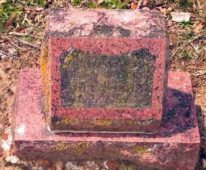 WEBB, EUGENE - Lawrence County, Arkansas | EUGENE WEBB - Arkansas Gravestone Photos