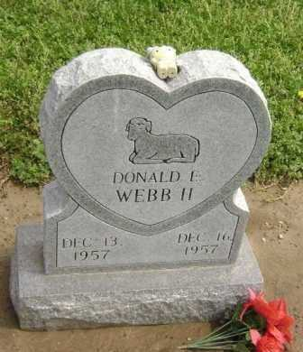 WEBB II, DONALD E. - Lawrence County, Arkansas | DONALD E. WEBB II - Arkansas Gravestone Photos