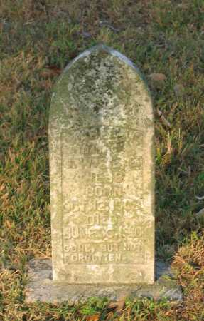 WEBB, MABLE M. - Lawrence County, Arkansas | MABLE M. WEBB - Arkansas Gravestone Photos