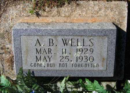 "WELLS, ABRAM B.  ""A. B."" - Lawrence County, Arkansas 