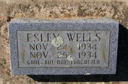 WELLS, ESLEY - Lawrence County, Arkansas | ESLEY WELLS - Arkansas Gravestone Photos
