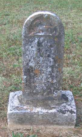 WELLS, EFFA E. - Lawrence County, Arkansas | EFFA E. WELLS - Arkansas Gravestone Photos