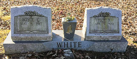 WHITE, BOYCE CARTER - Lawrence County, Arkansas | BOYCE CARTER WHITE - Arkansas Gravestone Photos