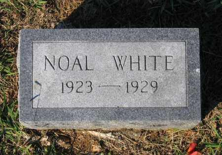 WHITE, NOAL - Lawrence County, Arkansas | NOAL WHITE - Arkansas Gravestone Photos