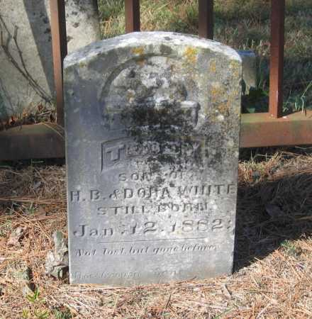 WHITE, TEDDY - Lawrence County, Arkansas | TEDDY WHITE - Arkansas Gravestone Photos