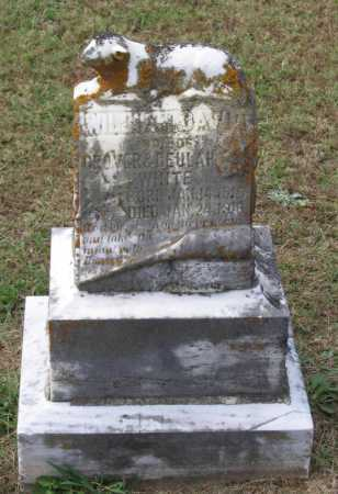 WHITE, WILLIAM DAVID - Lawrence County, Arkansas | WILLIAM DAVID WHITE - Arkansas Gravestone Photos