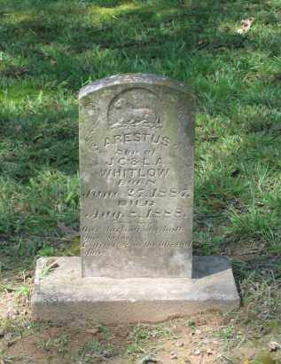 WHITLOW, ARESTUS - Lawrence County, Arkansas | ARESTUS WHITLOW - Arkansas Gravestone Photos