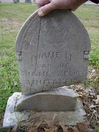 WHITTAKER, DOVIE M. - Lawrence County, Arkansas | DOVIE M. WHITTAKER - Arkansas Gravestone Photos