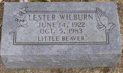 WILBURN, LESTER - Lawrence County, Arkansas | LESTER WILBURN - Arkansas Gravestone Photos