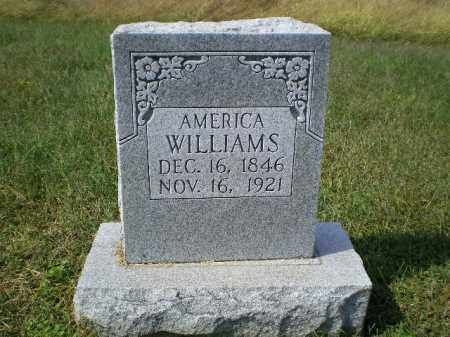 WILLIAMS, AMERICA - Lawrence County, Arkansas | AMERICA WILLIAMS - Arkansas Gravestone Photos