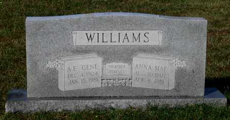 WILLIAMS, ANNA MAE - Lawrence County, Arkansas | ANNA MAE WILLIAMS - Arkansas Gravestone Photos