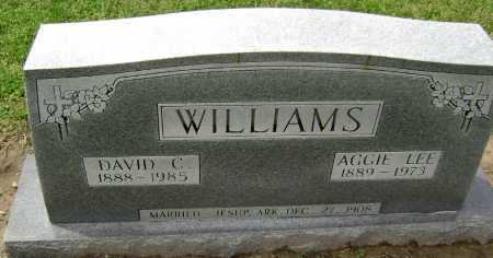 WILLIAMS, DAVID CLEO - Lawrence County, Arkansas | DAVID CLEO WILLIAMS - Arkansas Gravestone Photos