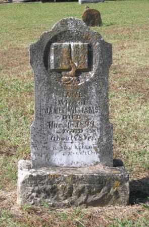 WILLIAMS, JANE - Lawrence County, Arkansas | JANE WILLIAMS - Arkansas Gravestone Photos
