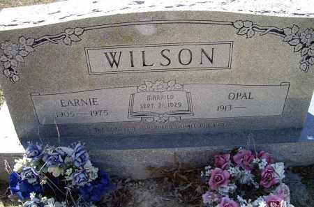 WILSON, EARNIE - Lawrence County, Arkansas | EARNIE WILSON - Arkansas Gravestone Photos