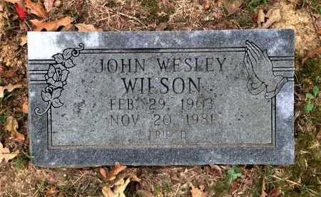 WILSON, JOHN WESLEY - Lawrence County, Arkansas | JOHN WESLEY WILSON - Arkansas Gravestone Photos