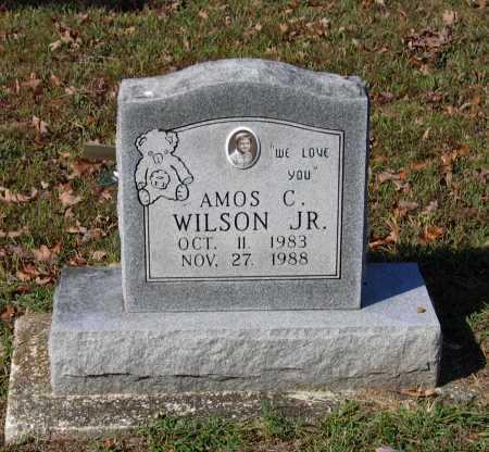 WILSON, JR., AMOS CARL - Lawrence County, Arkansas | AMOS CARL WILSON, JR. - Arkansas Gravestone Photos