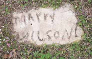 WILSON, MARY - Lawrence County, Arkansas | MARY WILSON - Arkansas Gravestone Photos
