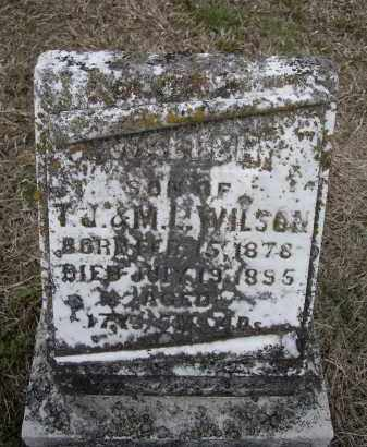 WILSON, THOMAS WALTER - Lawrence County, Arkansas | THOMAS WALTER WILSON - Arkansas Gravestone Photos