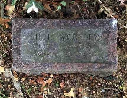 WOOSLEY, LILLIE CARLTON - Lawrence County, Arkansas | LILLIE CARLTON WOOSLEY - Arkansas Gravestone Photos