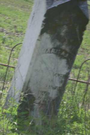 RUFFNER, MARY A. L. - Lawrence County, Arkansas | MARY A. L. RUFFNER - Arkansas Gravestone Photos