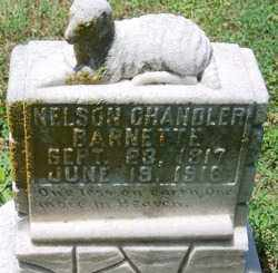 BARNETTE, NELSON CHANDLER - Lee County, Arkansas | NELSON CHANDLER BARNETTE - Arkansas Gravestone Photos