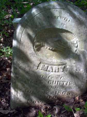 CURTIS, MARY - Lee County, Arkansas | MARY CURTIS - Arkansas Gravestone Photos