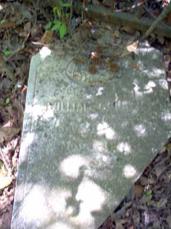 CURTIS, WILLIAM T - Lee County, Arkansas | WILLIAM T CURTIS - Arkansas Gravestone Photos