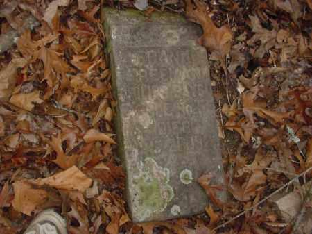 FREEMAN, FRANK - Lee County, Arkansas | FRANK FREEMAN - Arkansas Gravestone Photos