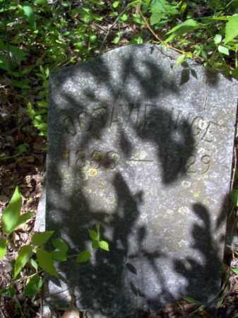 INGE, OCTAVIE - Lee County, Arkansas | OCTAVIE INGE - Arkansas Gravestone Photos