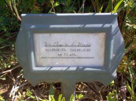 NORRIS, CHARLES E - Lee County, Arkansas | CHARLES E NORRIS - Arkansas Gravestone Photos