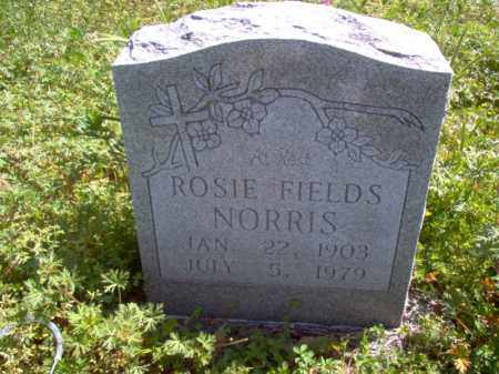 NORRIS, ROSIE - Lee County, Arkansas | ROSIE NORRIS - Arkansas Gravestone Photos