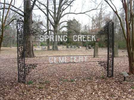 ENTRANCE,  - Lee County, Arkansas    ENTRANCE - Arkansas Gravestone Photos