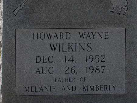 WILKINS, HOWARD WAYNE - Lincoln County, Arkansas | HOWARD WAYNE WILKINS - Arkansas Gravestone Photos