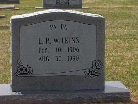 WILKINS, LODDYDILL R. - Lincoln County, Arkansas | LODDYDILL R. WILKINS - Arkansas Gravestone Photos