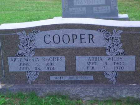 COOPER, ARTIEMESIA - Little River County, Arkansas | ARTIEMESIA COOPER - Arkansas Gravestone Photos
