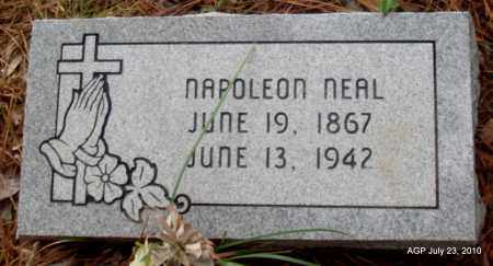 NEAL, NAPOLEON - Little River County, Arkansas | NAPOLEON NEAL - Arkansas Gravestone Photos