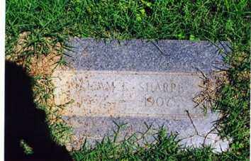 SHARP, WILLIAM ELIJAH - Little River County, Arkansas | WILLIAM ELIJAH SHARP - Arkansas Gravestone Photos
