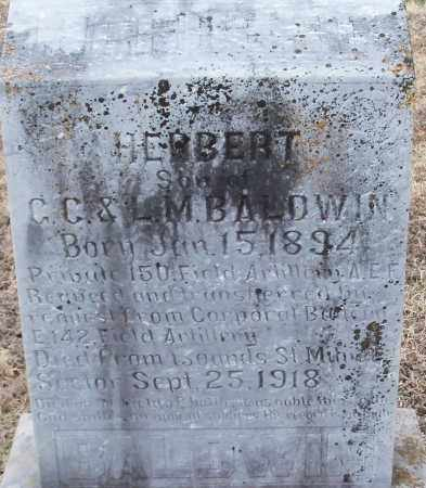 BALDWIN (VETERAN), HERBERT - Logan County, Arkansas | HERBERT BALDWIN (VETERAN) - Arkansas Gravestone Photos