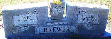 BREWER, MOLLIE - Logan County, Arkansas | MOLLIE BREWER - Arkansas Gravestone Photos