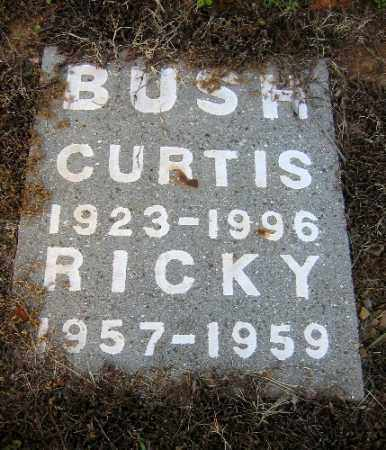 BUSH, RICKY - Logan County, Arkansas | RICKY BUSH - Arkansas Gravestone Photos