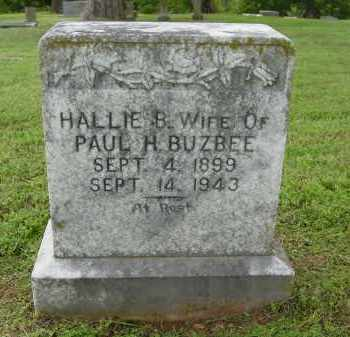 BUZBEE, HALLIE - Logan County, Arkansas | HALLIE BUZBEE - Arkansas Gravestone Photos
