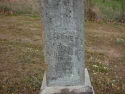 CORNETT, FIELDING - Logan County, Arkansas | FIELDING CORNETT - Arkansas Gravestone Photos