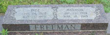 FREEMAN, INEZ - Logan County, Arkansas | INEZ FREEMAN - Arkansas Gravestone Photos
