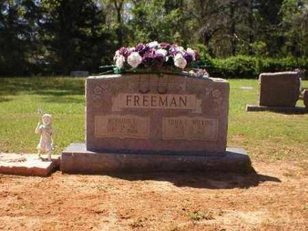 WILKINS FREEMAN, ERMA L. - Logan County, Arkansas | ERMA L. WILKINS FREEMAN - Arkansas Gravestone Photos