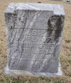 GODFREY, ELSIE - Logan County, Arkansas | ELSIE GODFREY - Arkansas Gravestone Photos