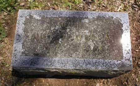 FRANKLIN HEATHCOAT, SARAH LUCINDA - Logan County, Arkansas | SARAH LUCINDA FRANKLIN HEATHCOAT - Arkansas Gravestone Photos